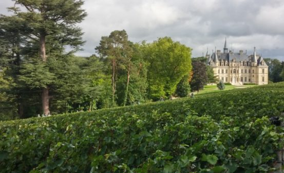 Champagne, Castle and Biodynamic